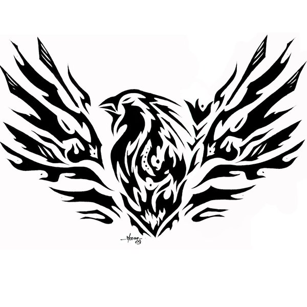 tribal phoenix tattoo designs